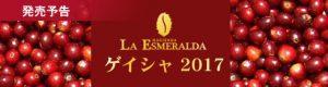 エスメラルダスペシャル ゲイシャ2017