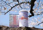 桜ぶれんど