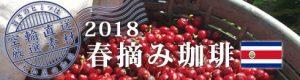 2018年春摘み珈琲