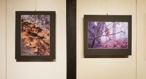 山崎 君枝 写真展『冬の追憶』榛名山